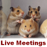 Live HAMS meetings